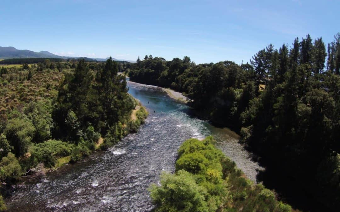 Winter Fishing well under way Tongariro River, Turangi