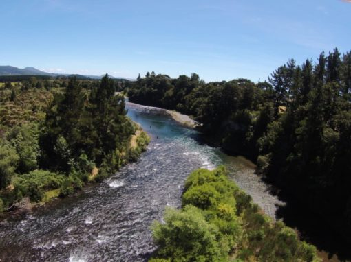 Taupo fishing regulation changes